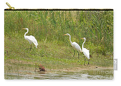 Carry-all Pouch featuring the photograph Egret Family 1 by Maria Urso