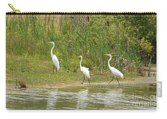 Carry-all Pouch featuring the photograph Egret Family 2 by Maria Urso