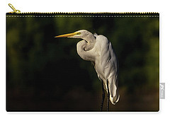 Egret On Deck Rail Carry-all Pouch by Robert Frederick