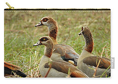 Carry-all Pouch featuring the photograph Egyptian Geese by Betty-Anne McDonald