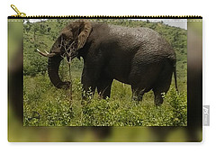 Elephant 4 Carry-all Pouch