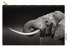 Elephant Bull Drinking Water - Duetone Carry-all Pouch