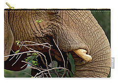 Elephant Curl Carry-all Pouch