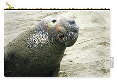 Carry-all Pouch featuring the photograph Elephant Seal by Anthony Jones