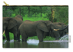 Elephant Shower Carry-all Pouch