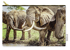 Mud Play Carry-all Pouch by Janis Knight