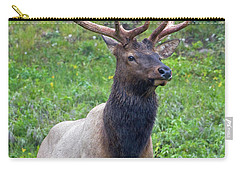 Carry-all Pouch featuring the photograph Elk 5 by Gary Lengyel