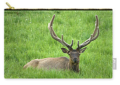 Carry-all Pouch featuring the photograph Elk 6 by Gary Lengyel