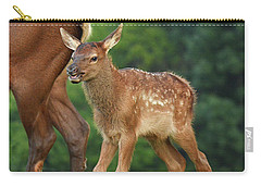 Elk Calf Arrives Carry-all Pouch by Alan Lenk