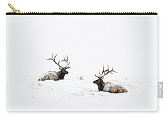 Elk Laying In A Snow Covered Meadow - 9069 Carry-all Pouch