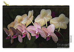 Carry-all Pouch featuring the photograph Eloise by Elaine Teague