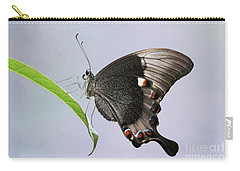 Emerald Peacock Swallowtail Butterfly V2 Carry-all Pouch
