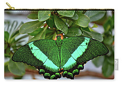 Emerald Swallowtail Butterfly Carry-all Pouch