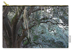 Emmet Park In Savannah Carry-all Pouch