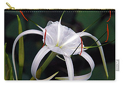 En Pointe Carry-all Pouch by Byron Varvarigos