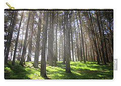 Enchanted Carry-all Pouch by Laurie Search
