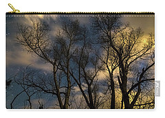 Carry-all Pouch featuring the photograph Enchanting Night by James BO Insogna