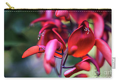 Carry-all Pouch featuring the photograph Erythrina Crista Galli Flower Spain Square Cadiz Spain by Pablo Avanzini