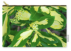Euonymus Blondy Shrub 2 Carry-all Pouch