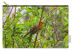 European Robin Carry-all Pouch