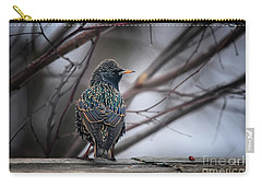 European Starling In Non Breeding Colors Carry-all Pouch
