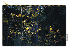 Evening Light In November Carry-all Pouch by Ronda Broatch