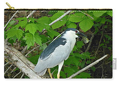 Carry-all Pouch featuring the photograph Evening Snack For A Night Heron by Donald C Morgan