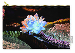 Evening Splendor Carry-all Pouch by Cindy Manero