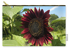 Evening Sun Sunflower #1 Carry-all Pouch