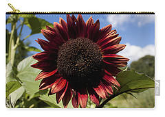 Evening Sun Sunflower #2 Carry-all Pouch