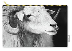 Ewe Me Carry-all Pouch