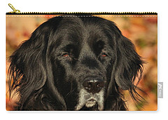 Eyes Of Autumn Carry-all Pouch