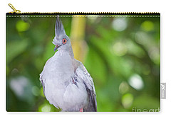 Carry-all Pouch featuring the photograph Eyes Wide Open by Judy Kay