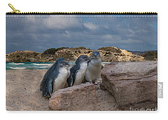 Carry-all Pouch featuring the photograph Fairy Penguins by Elaine Teague