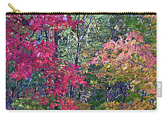 Fall 2016 2 Carry-all Pouch by George Ramos