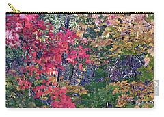 Fall 2016 3 Carry-all Pouch by George Ramos