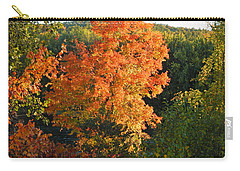 Fall 2016 6 Carry-all Pouch by George Ramos