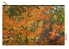 Fall 2016 8 Carry-all Pouch by George Ramos