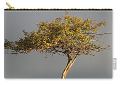 Fall At The Crabapple Tree Carry-all Pouch