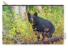 Fall Bear Carry-all Pouch