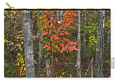 Fall Color At Gladwin 4543 Carry-all Pouch