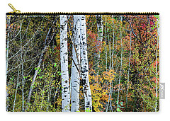 Carry-all Pouch featuring the photograph Fall Colors by Bryan Carter