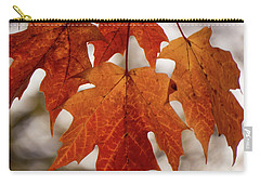 Carry-all Pouch featuring the photograph Fall Foliage by Kimberly Mackowski