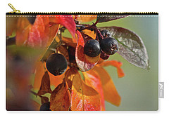 Carry-all Pouch featuring the photograph Fall Leaves And Berries by Ann E Robson