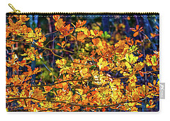 Fall Light #e2 Carry-all Pouch by Leif Sohlman