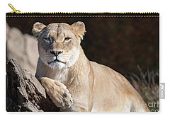 Fall Lioness Carry-all Pouch