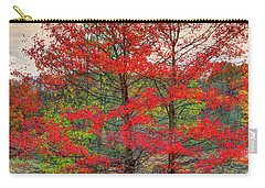 Fall Painting Carry-all Pouch by Skip Tribby
