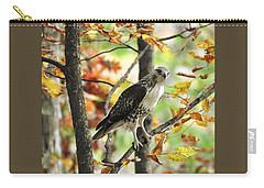 Fall Red-tailed Hawk Carry-all Pouch