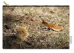 Fallen Chestnut Carry-all Pouch by Helga Novelli