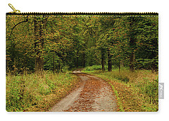 Falling Curves Carry-all Pouch